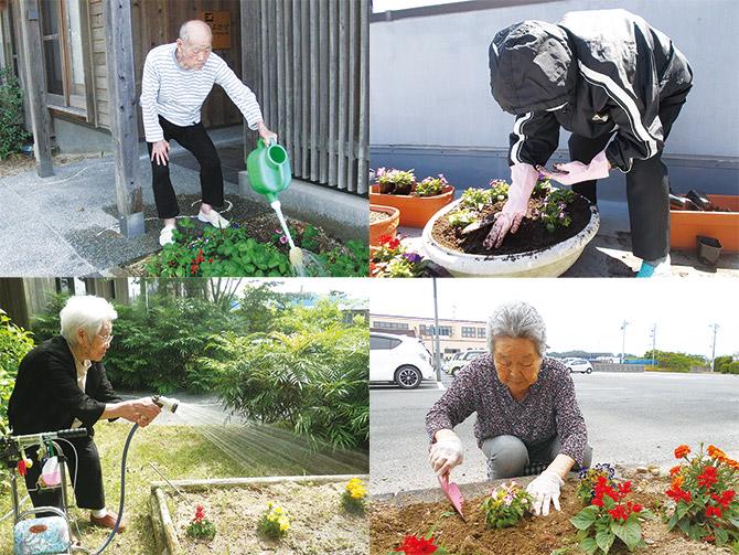 花の苗の寄付をいただきました