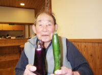 野菜収穫【ひだまり】